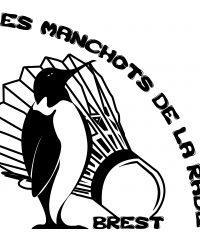 LES MANCHOTS DE LA RADE